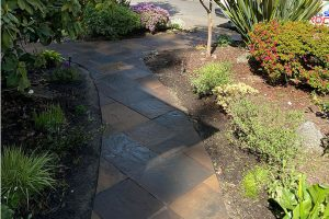 Northwest blend paver walkway through garden